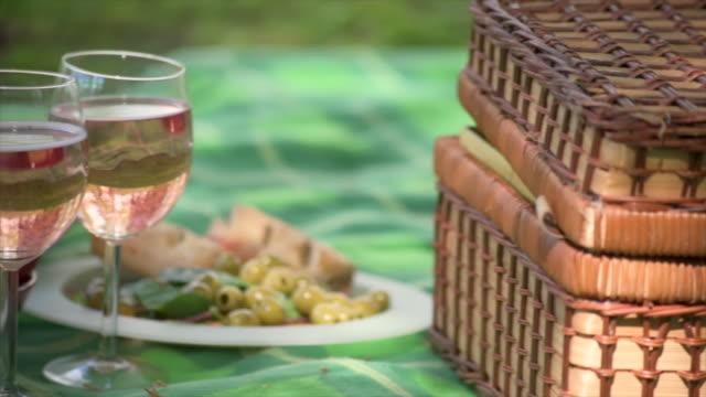 vídeos de stock, filmes e b-roll de a mid panning shot of a picnic in a park with litter left behind - equipamento doméstico