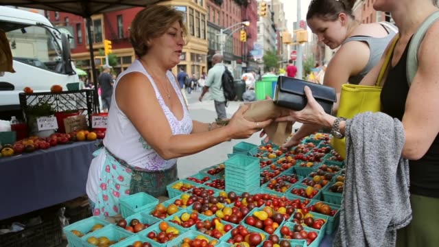 mid shot a woman selling groceries at greenmarket shoppers visit the greenmarket at union square park new york city's largest farmers market with up... - union square new york city stock videos and b-roll footage