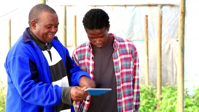Mid shot as African Organic Farmers discuss over digital tablet