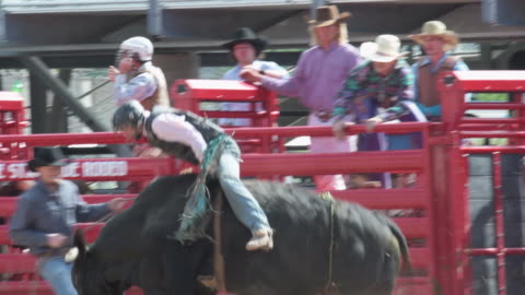 mid shot as young cowboy rides a bull - rodeo stock videos & royalty-free footage
