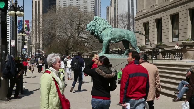 Mid shot of bronze lion statue created by Edward Kemeys at the front of the Art Institute of Chicago Chicago Scenes From The Windy City on April 22...