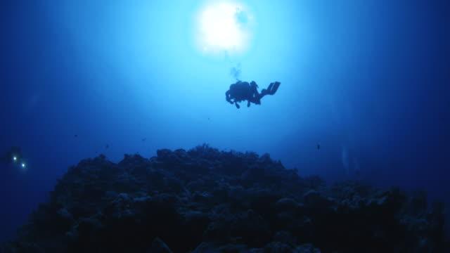 vidéos et rushes de mid shot of diver swimming above camera - plongée sous marine autonome