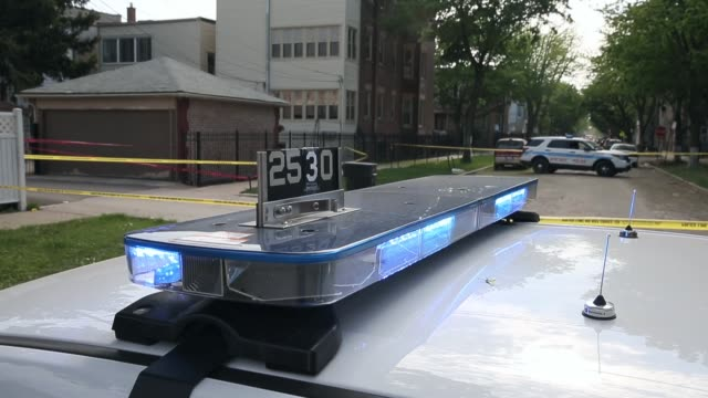 mid shot of police cars sirens mid shot of police car at crime scene chicago police investigate a crime scene after a 19yearold woman was shot in the... - gun crime stock videos & royalty-free footage