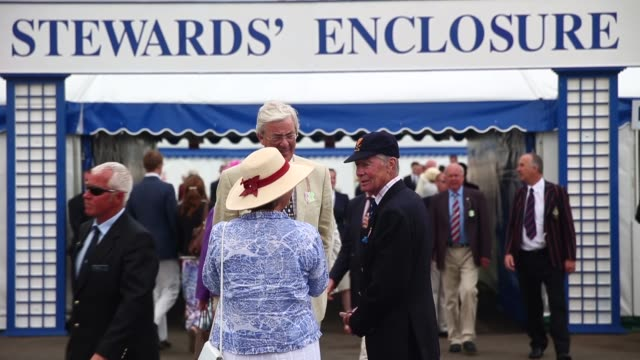 mid shot people arriving at the steward's enclosure at the henley royal regatta - enclosure stock videos and b-roll footage
