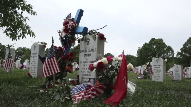 mid shot the gravesite of usmc sergeant david james smith of frederick maryland at section 60 of arlington national cemetery sergeant smith died... - sergeant stock videos & royalty-free footage