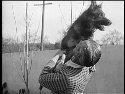 b/w mid1920s rin tin tin being held by smiling trainer lee duncan / newsreel - one mid adult man only stock videos & royalty-free footage