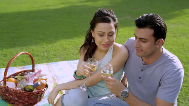 vídeos de stock, filmes e b-roll de ms mid-adult couple raising toast with wine in park / india - plano americano