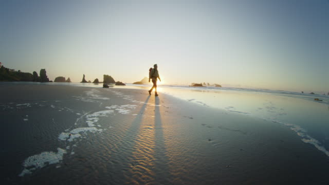 middle age man hiking on beach at sunset, bandon oregon - power in nature stock videos & royalty-free footage