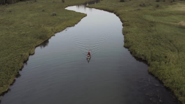 aerial 4k: middle aged active couple canoeing down a calm river at dusk - canoe stock videos & royalty-free footage