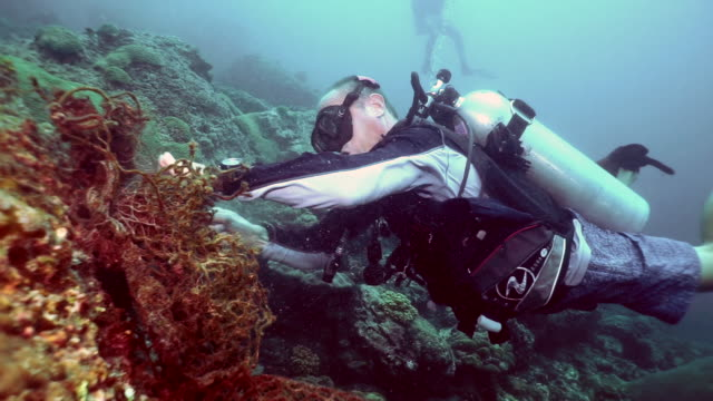 middle aged eco tourist scuba diver volunteer removing discarded fishing net pollution from undersea coral reef - aqualung diving equipment stock videos & royalty-free footage