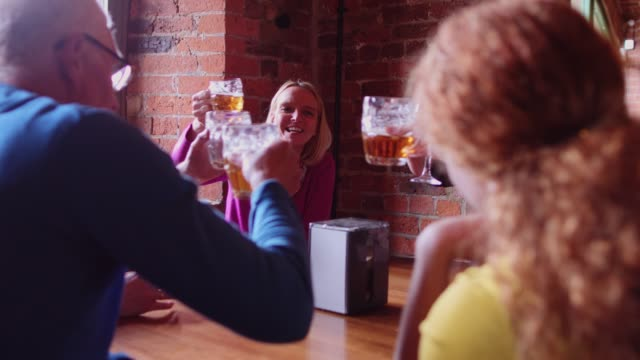 Middle Aged Group of Friends Making a Toast in Pub