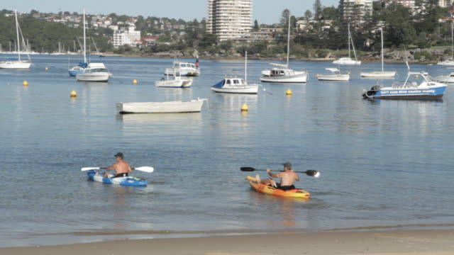 middle aged kayakers paddle in sydney harbour     - kayaking stock videos & royalty-free footage