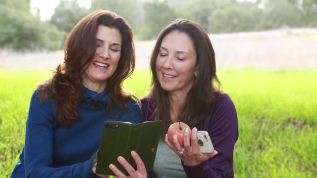 middle aged sisters after a hike looking at phones - 60 64 years stock videos & royalty-free footage