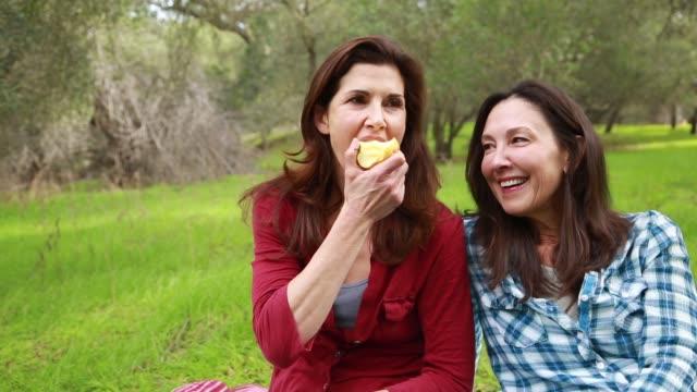 middle aged sisters relaxing and having a picnic in the park - sister stock videos & royalty-free footage