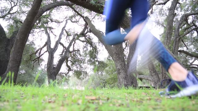 middle aged woman running through park in workout clothes - one mature woman only stock videos & royalty-free footage