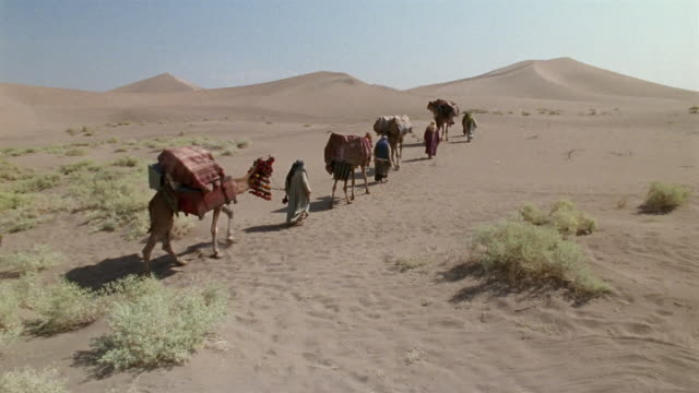 ws, ha, middle east, bedouins leading camels through desert, rear view - 運ぶ点の映像素材/bロール