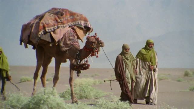 MS, Middle East, Bedouins leading camels through desert