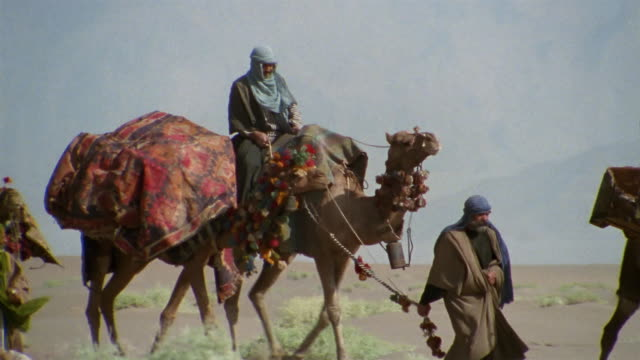 MS, PAN, Middle East, Bedouins leading camels through desert