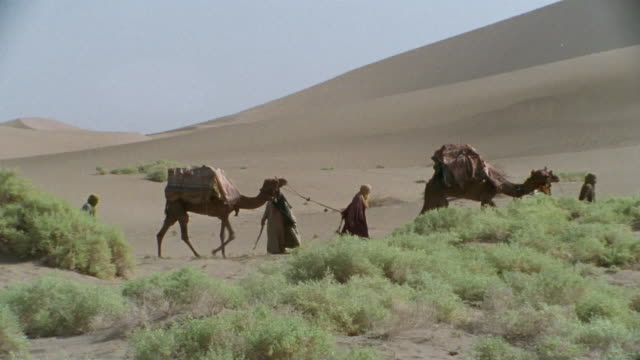 WS, PAN, Middle East, Bedouins leading camels through desert