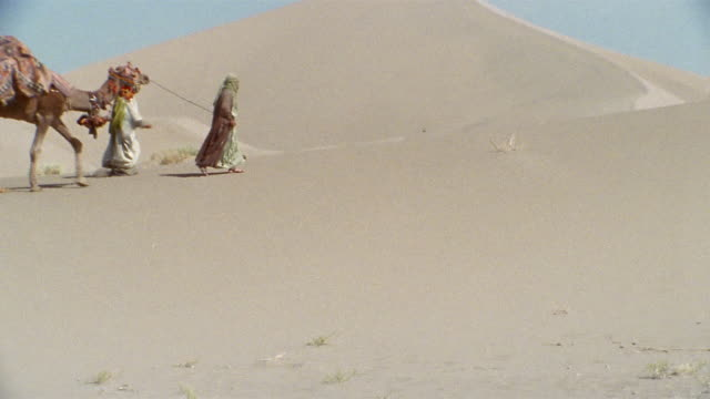 TU, MS, Middle East, Camel train traveling through desert