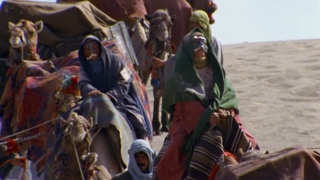 CU, HA, Middle East, Camel train traveling through desert