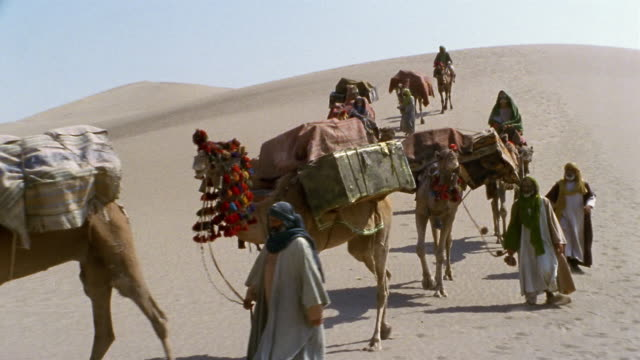 ms, pan, middle east, camel train traveling through desert - 運ぶ点の映像素材/bロール