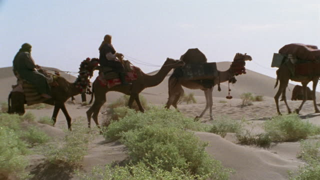 MS, PAN, Middle East, Camel train traveling through desert