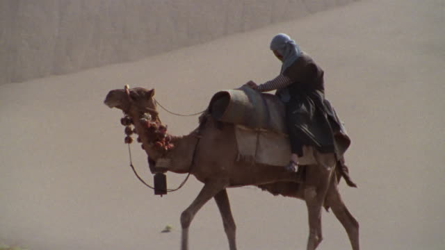 MS, TD, Middle East, Man riding camel through desert