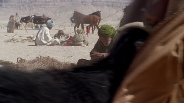 MS, Middle East, Nomadic people in desert camp, flock of sheep and goats passing in foreground