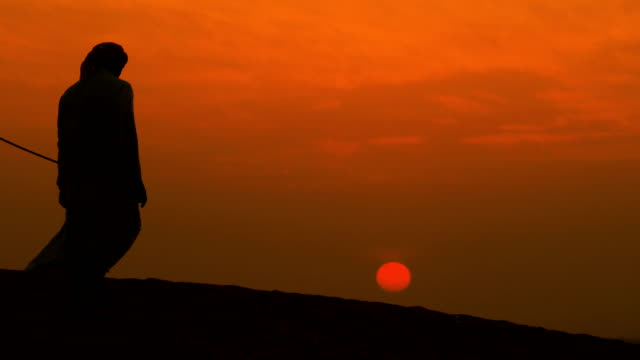 middle eastern male camel owner desert at sunset - qatar stock videos & royalty-free footage
