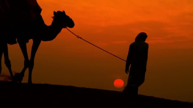 middle eastern male camel owner desert sunset silhouette - saudi arabien stock-videos und b-roll-filmmaterial