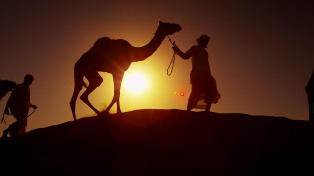 vídeos de stock, filmes e b-roll de middle eastern male camel owners in desert arabia - adereço de cabeça