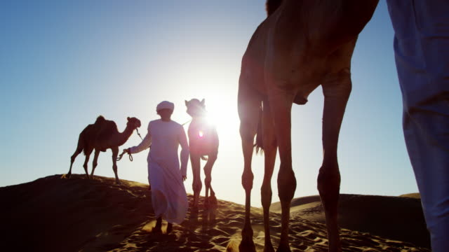 middle eastern male camel owners in desert arabia - camel train stock videos & royalty-free footage