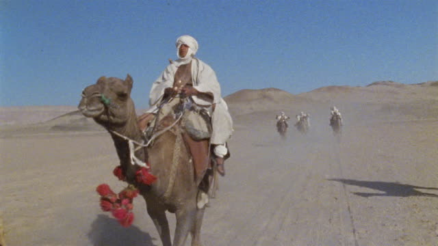 SLO MO LA WS REENACTMENT Middle Eastern warriors riding into battle on camels / Iran