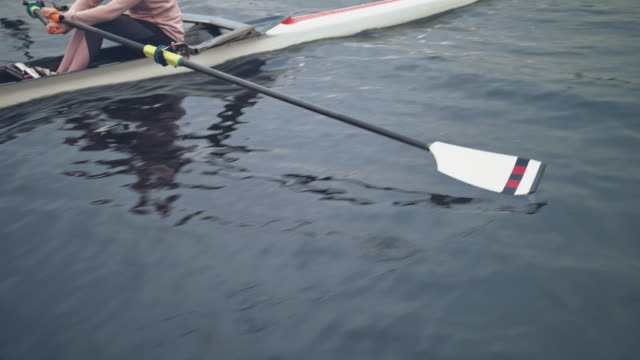 midsection of young woman rowing boat in river - sculling stock videos & royalty-free footage