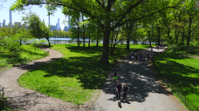 midtown manhattan skyscraper stands through the growing fresh green leaf trees beyond the central park reservoir in central park at new york city ny usa on may. 11 2019. - treelined stock videos & royalty-free footage
