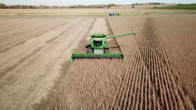 midwest autumn harvest scene - iowa stock videos & royalty-free footage