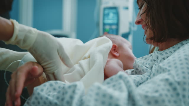 vídeos de stock e filmes b-roll de midwife giving newborn to mother in delivery room - fragilidade