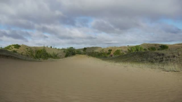 mientras la desertificacion se abre paso en el planeta un bosque de canada sufre el fenomeno inverso las dunas desaparecen ano tras ano ante el... - planeta stock videos & royalty-free footage
