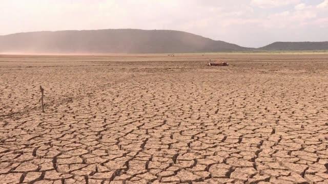 stockvideo's en b-roll-footage met mientras sudafrica experimenta su segundo ano de sequia voluntarios recolectan miles de litros de agua enviandola en camiones a las ciudades mas... - agricultura