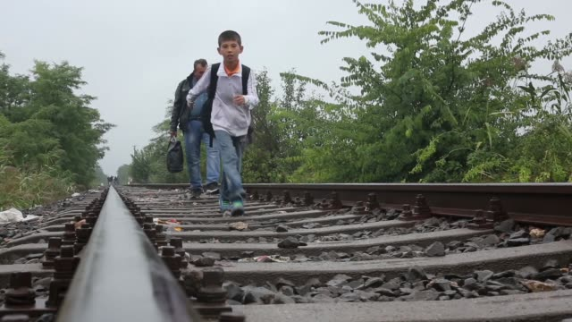 vídeos y material grabado en eventos de stock de migrants cross the hungarian the border with serbia ahead of new laws for migrant entry to hungary on september 14, 2015 in roszke, hungary. a record... - cultura húngara