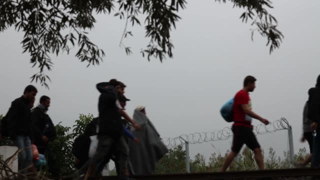 vídeos de stock e filmes b-roll de migrants cross the hungarian the border with serbia ahead of new laws for migrant entry to hungary on september 14, 2015 in roszke, hungary. a record... - cerca