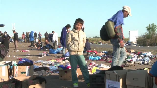 migrants mainly from syria continue to pour across the hungarian border having made their way along the roads of turkey greece macedonia and serbia... - osteuropäische kultur stock-videos und b-roll-filmmaterial
