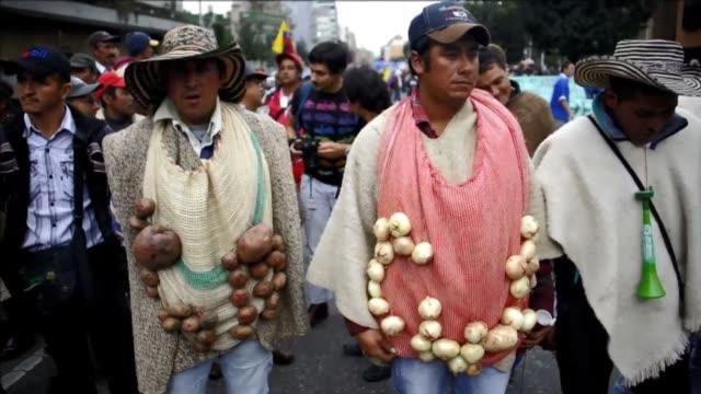 vídeos de stock e filmes b-roll de miles de campesinos de toda colombia protestaron este martes en bogota para exigir al gobierno del presidente juan manuel santos ayudas para el campo... - exigir