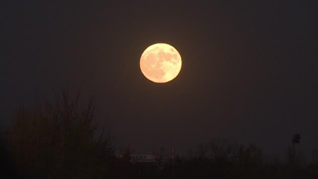 miles de personas aclamaron en la noche del lunes en australia la aparicion de la superluna un espectaculo mundial inedito desde hace casi 70 anos en... - astronomia stock videos & royalty-free footage