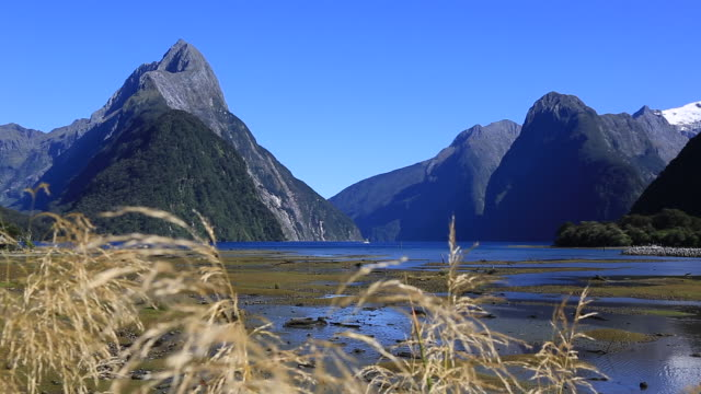 milford sound and te anau, new zealand video montage - film montage stock videos & royalty-free footage