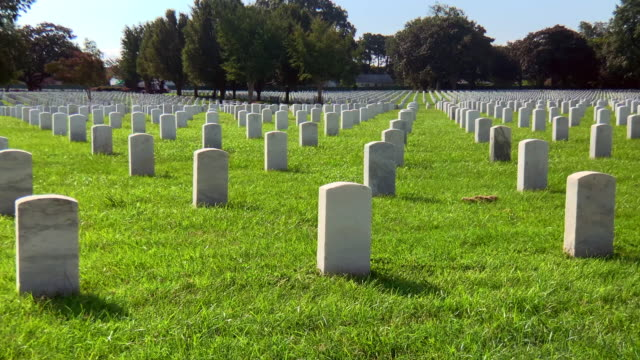 military grave stones - us memorial day stock videos & royalty-free footage