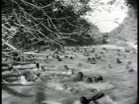 vídeos de stock, filmes e b-roll de military manuals training drills ws us soldiers swimming across river soldiers crossing open field soldiers fg using live ammunition in machine gun... - 1943