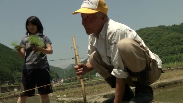 military personnel based at iwakuni take part in community rice planting in a rice paddy - satoyama scenery stock videos & royalty-free footage