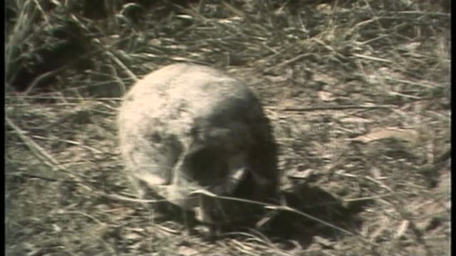 Robert Mugabe profile AS310783004 / ZIMBABWE Matebeleland EXT Skull on ground